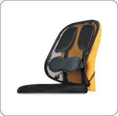 Fellowes Mesh Back Support Professional Series