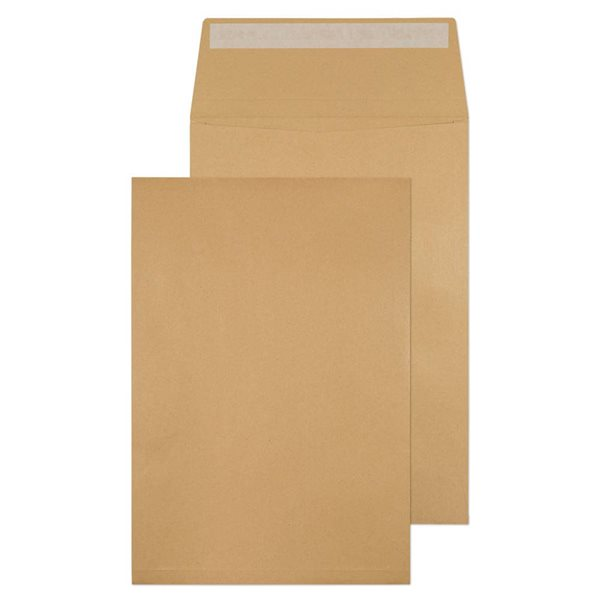 Gusset Envelopes Value Gusset Pocket P/S Plain C4 324x229x25mm Man PK125
