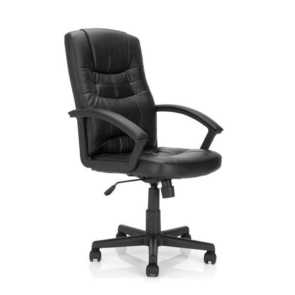 Executive Chairs Darwin High Back Leather Faced Executive Armchair Black