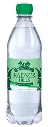 Cold Drinks Radnor Hills Sparkling Water 500ml PK24