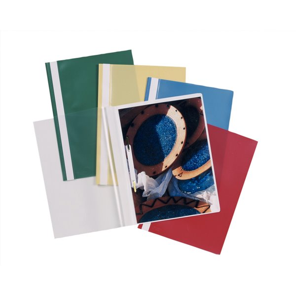 Clip Files Esselte Report File Assorted A4 PK25