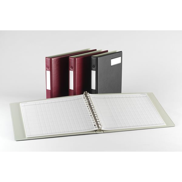 Accounts Binders & Refills Twinlock Variform V8 Multi Ring Binder